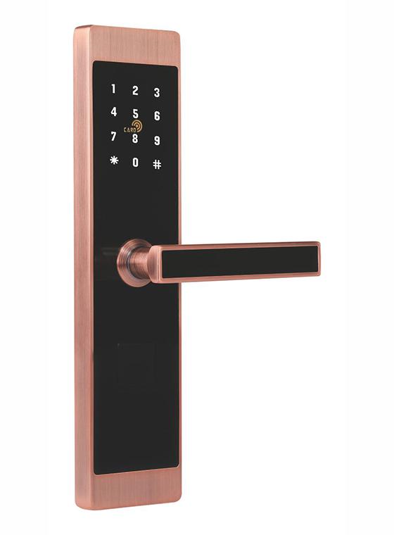 GLJ-9899LoRa无线联网密码锁