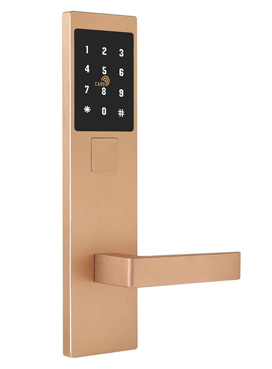 GLJ-868LoRa无线联网密码锁