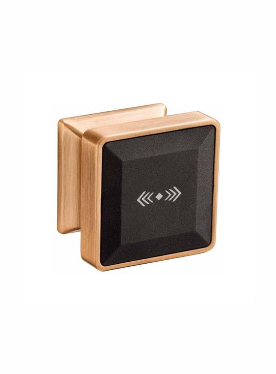 GLJ-50锌合金桑拿/储物柜智能锁